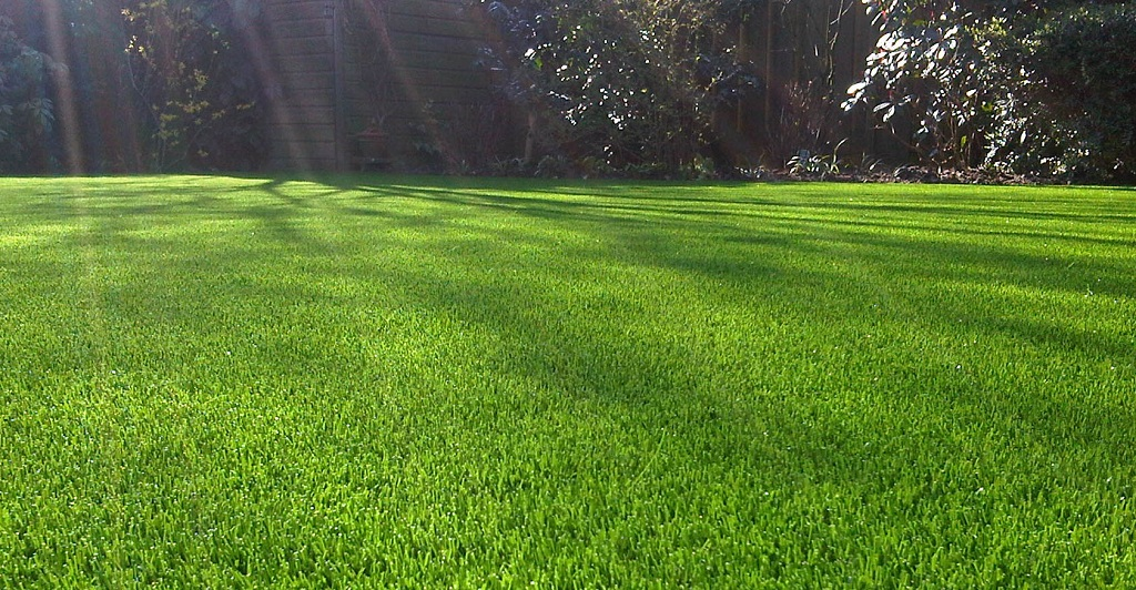 Easy Solutions to Avoid the Negative Effect of Sunlight on Artificial Grass