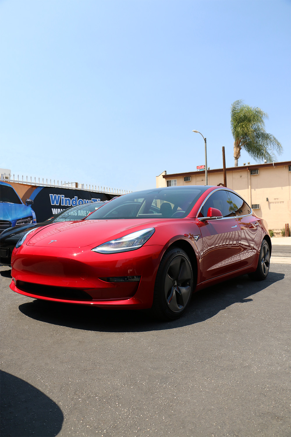 Tesla Model 3 Tint in Los Angeles