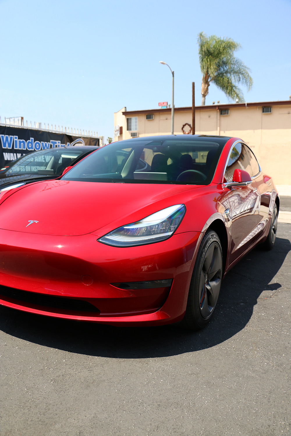 Tesla Model 3 Tint In Los Angeles Window Tint Z